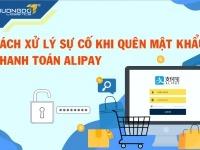 Cách xử lý sự cố khi quên mật khẩu thanh toán alipay